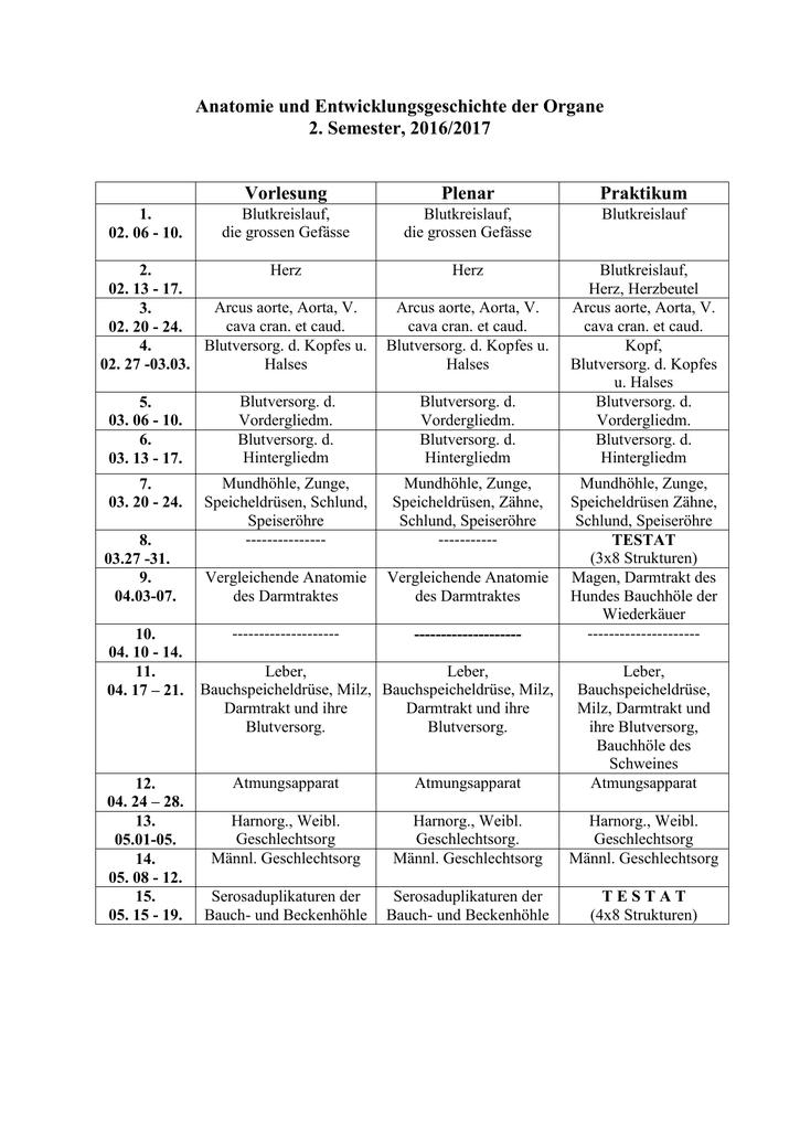 Nett Beckenhöhle Anatomie Zeitgenössisch - Menschliche Anatomie ...