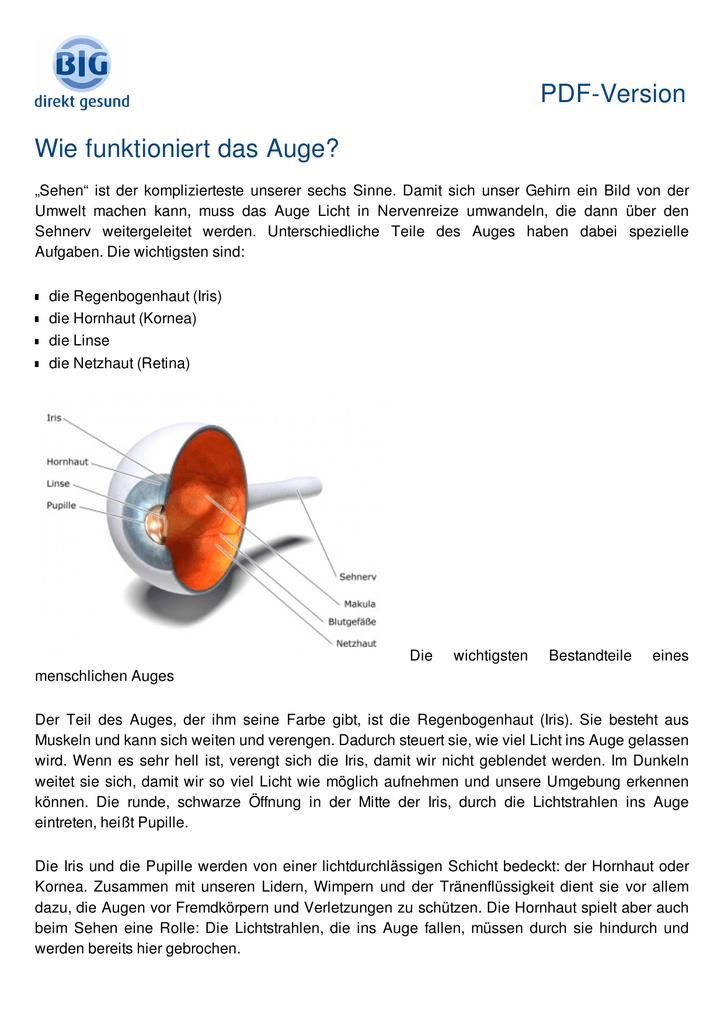 Charmant Anatomie Und Physiologie Des Auges Pdf Ideen - Menschliche ...