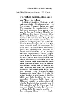 Arbeitsblatt 1 - Lösungen: Bewegung und Gelenke