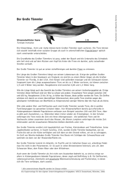Der Große Tümmler - Whale and Dolphin Conservation