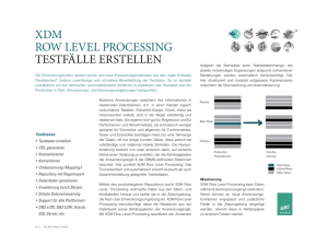 XDM Row Level Processing_13V07_deutsch.indd