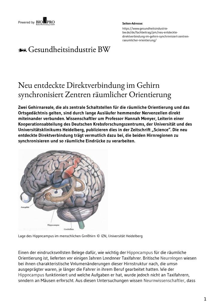 Ziemlich Gehirn Dump Arbeitsblatt Ideen - Super Lehrer ...