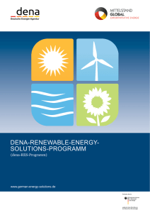 Das dena-Renewable-Energy-Solutions-Programm