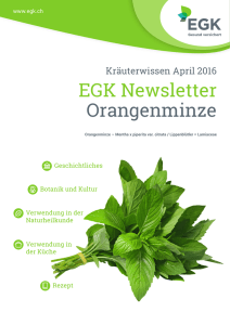 EGK Newsletter Orangenminze
