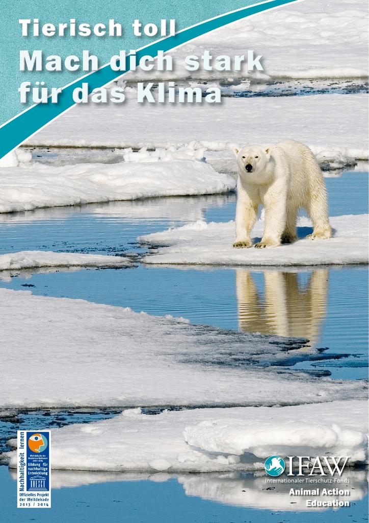 halten polarfüchse winterschlaf
