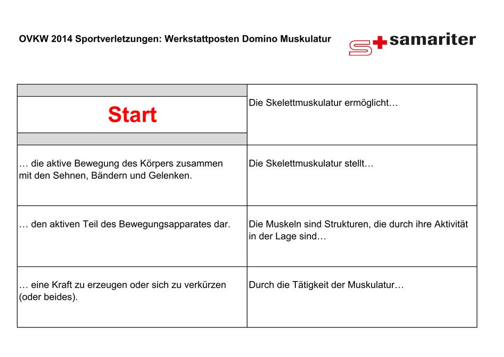 Niedlich Anatomie Der Skelettmuskeln Galerie - Anatomie Ideen ...