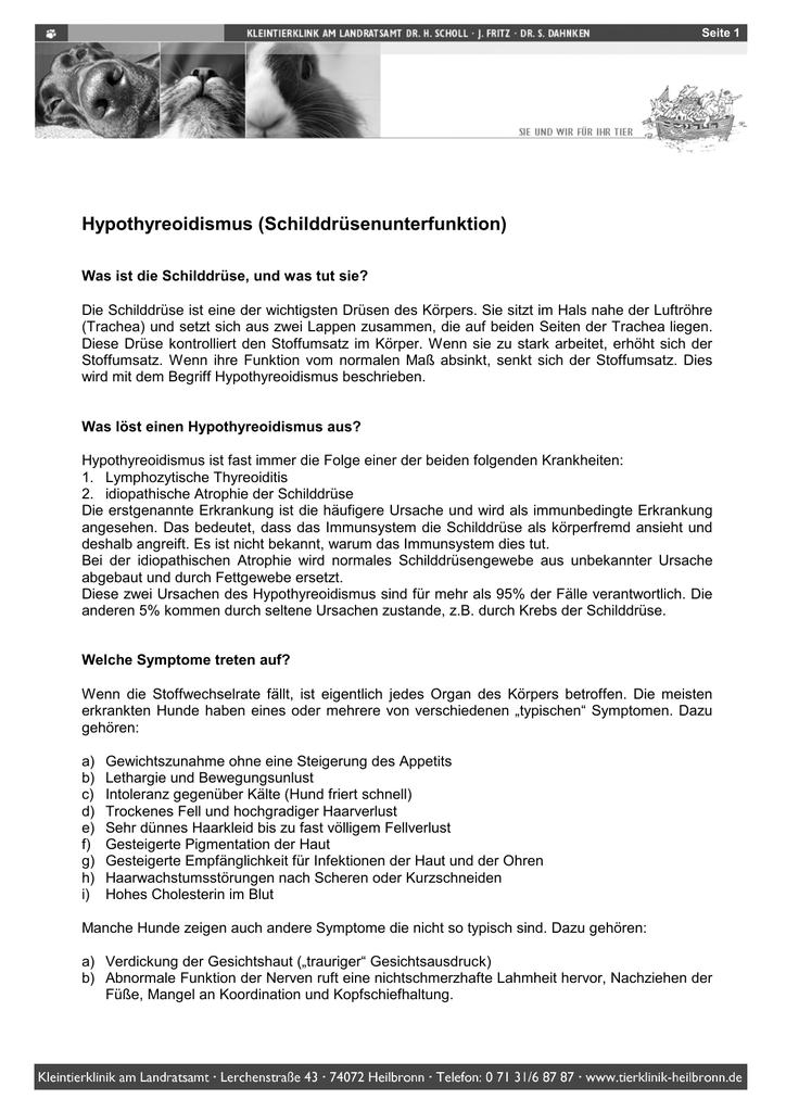 Hypothyreoidismus (Schilddrüsenunterfunktion)