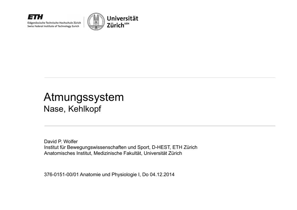 1 PDF 1.10M
