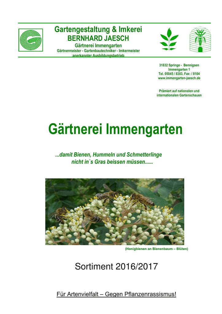 Saat,Wildbienen,Bienen,Imker,Imkerei,Onobrychis Viciifolia 1 kg Esparsette