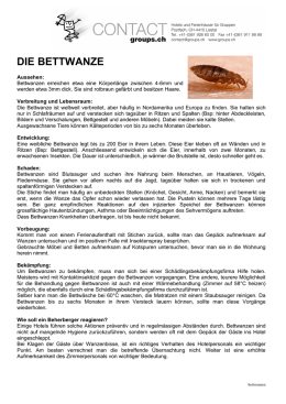 die bettwanze - CONTACT groups.ch
