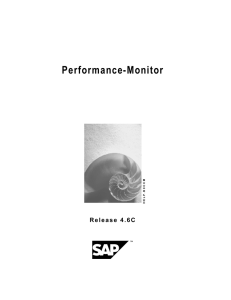 Performance-Monitor