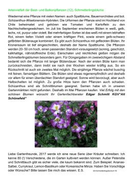winterahrte geranien vermehren