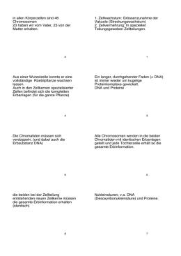 Lösungen: Repetitionsfragen zur Proteinbiosynthese