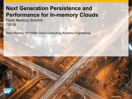 Next Generation Persistence and Performance for In