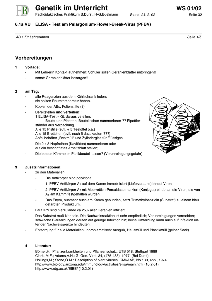 Tolle Nummer 5 Arbeitsblatt Bilder - Super Lehrer Arbeitsblätter ...