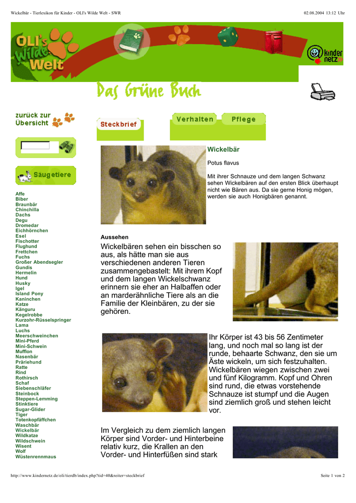 Zum Bericht - Der Wickelbär