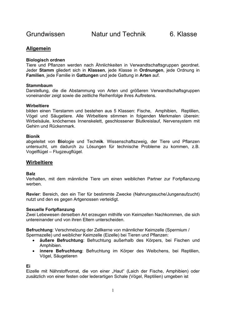 Grundwissen Natur und Technik 6. Klasse