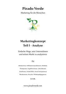 Marketingkonzept Teil I - Analyse