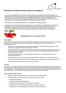 Entwickler Data Warehousing / Business Intelligence