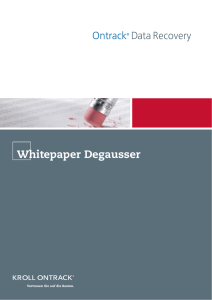 White Paper DG.01 - IT