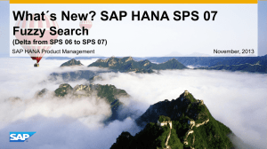 SAP HANA Fuzzy Search