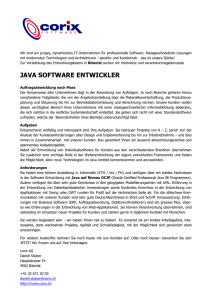 java software entwickler