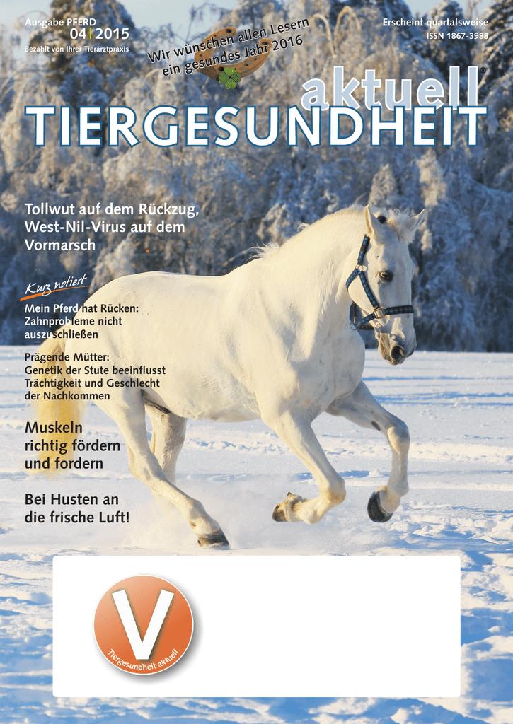Pferd 04-2015 - Tierarzt Owschlag