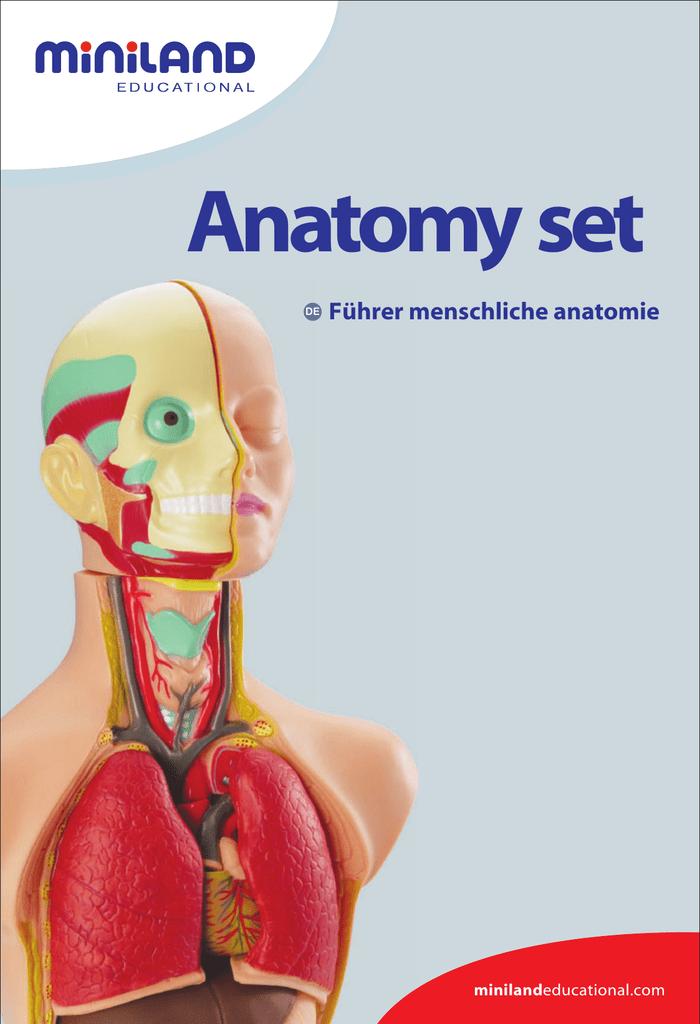 Führer menschliche anatomie