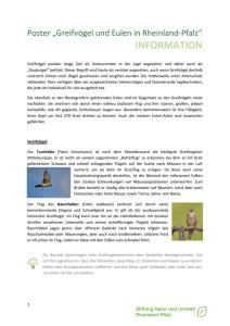 Kopie Flugbuch Pilot Walter Reichenberger NJG2 Holland Frankreich Ostfront