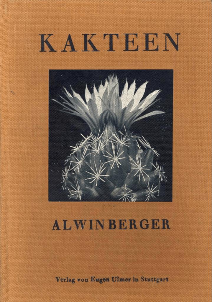 10 Echinocereus pulchellus PACHUCA Samen Kaktus Blumen Samen Sukkulenten