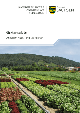 Gartensalate - Publikationen