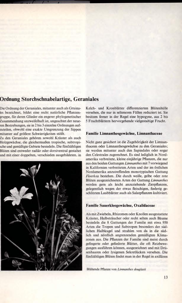 Gemütlich Blühende Pflanze Reproduktion Arbeitsblatt Ideen - Super ...