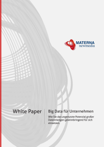 "Whitepaper ""Big Data"""