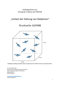 Stellungnahme Delfine - Whale and Dolphin Conservation