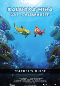 des Teacher`s Guide