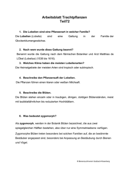 Teil110 (Tracht) Pflanzen Lobelien – Lobelia