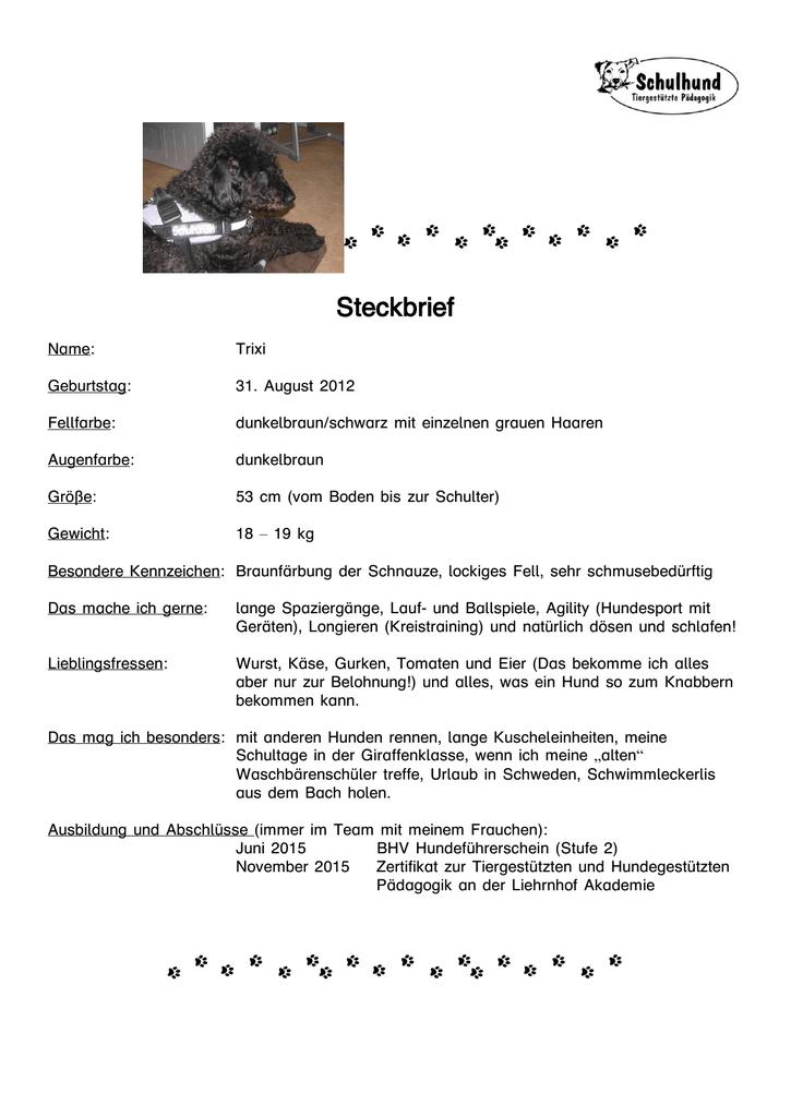 steckbrief lvr paul klee - Paul Klee Lebenslauf