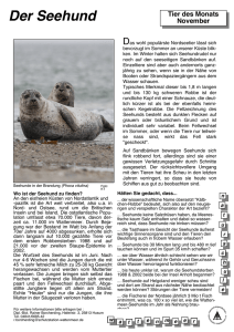 Tier.Seehund_, Layout 1 - Schutzstation Wattenmeer