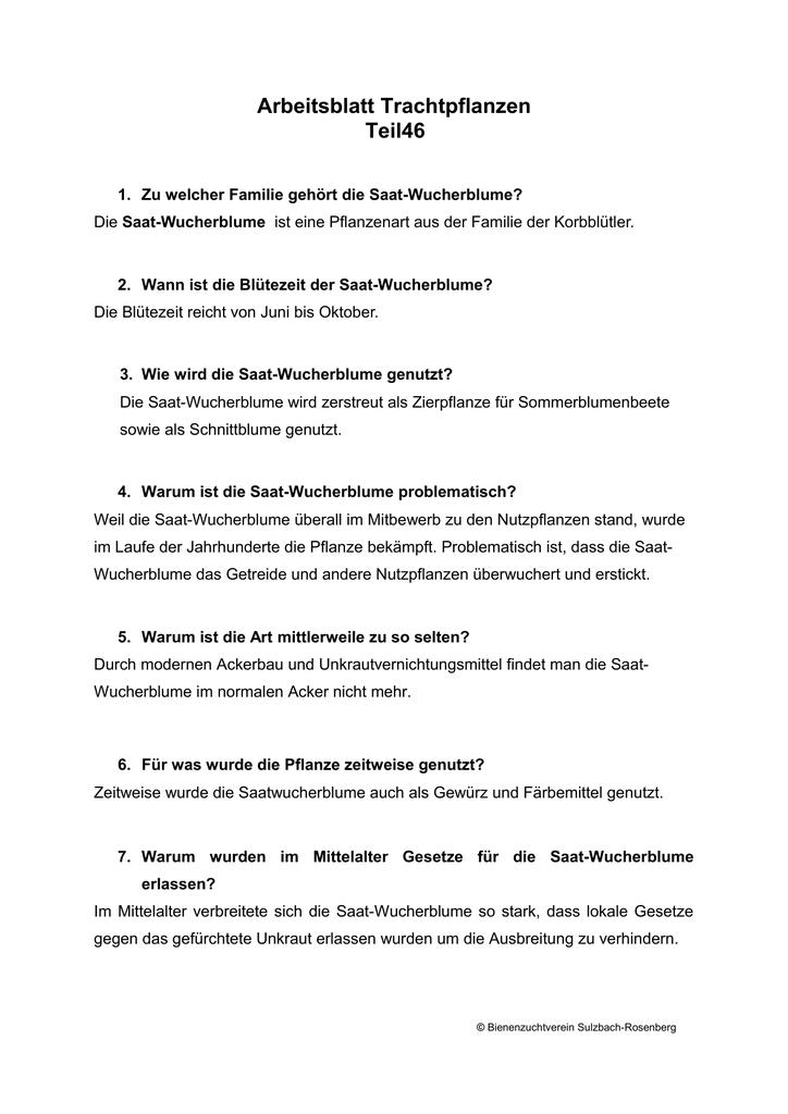 Groß Spongebob Wissenschaftliche Methode Arbeitsblatt Ideen - Super ...