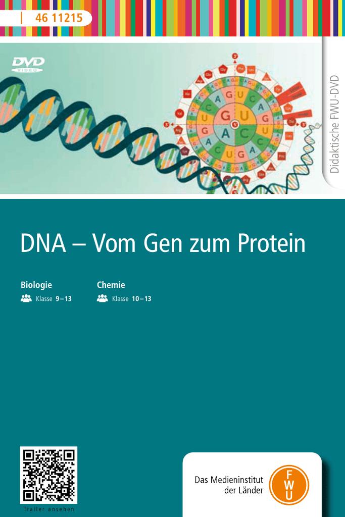 DNA – Vom Gen zum Protein