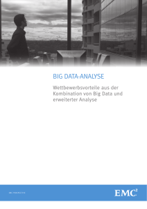 BIG DATA-ANALYSE