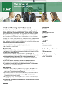 Praktikant Marketing und Strategie (m/w)