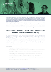implementation consultant im bereich project