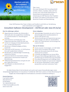 Consultant Software Development – C#/VB.net oder Java
