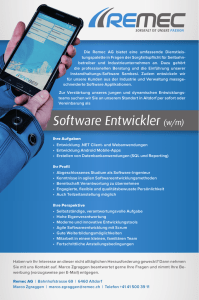 Software Entwickler