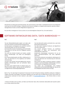 SOFTWARE ENTWICKLER BIG DATA / DATA