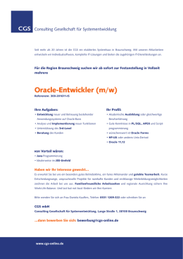Oracle-Entwickler (m/w)