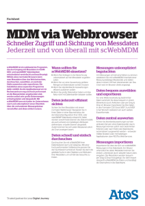 Factsheet MDM via Webbrowser