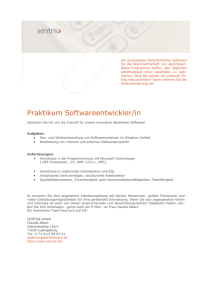 Praktikum Softwareentwickler/in