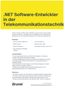 .NET Software-Entwickler in der Telekommunikationstechnik
